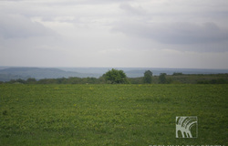Land near Kichevo Village